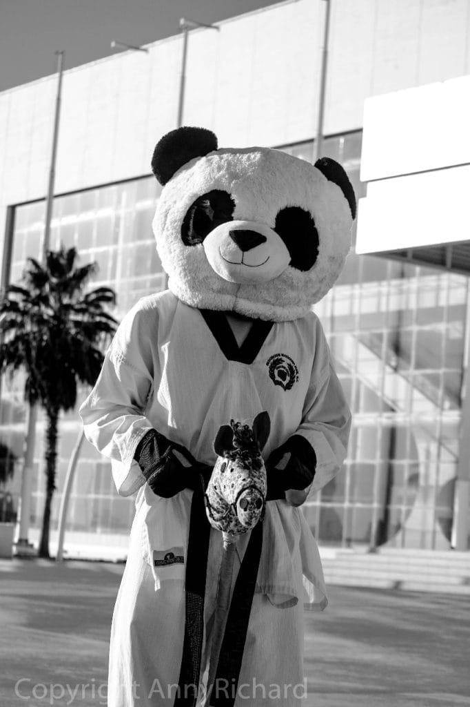 Persona disfrazada de Oso Panda