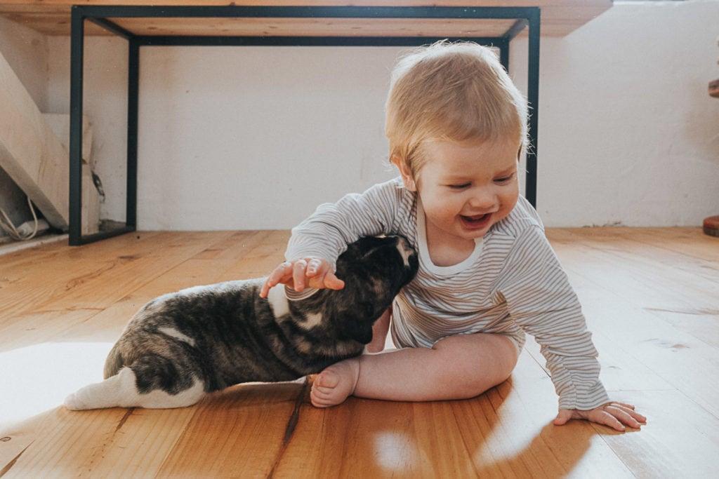 bebé jugando con un perrito