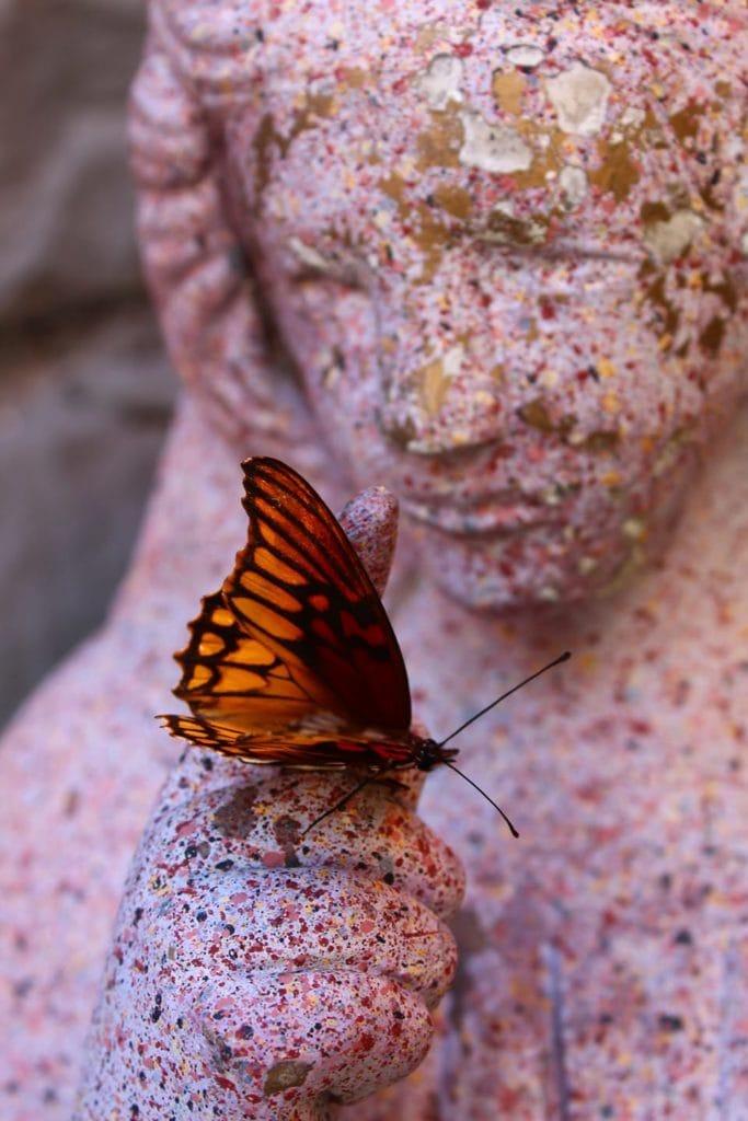 mariposa sobre estatua