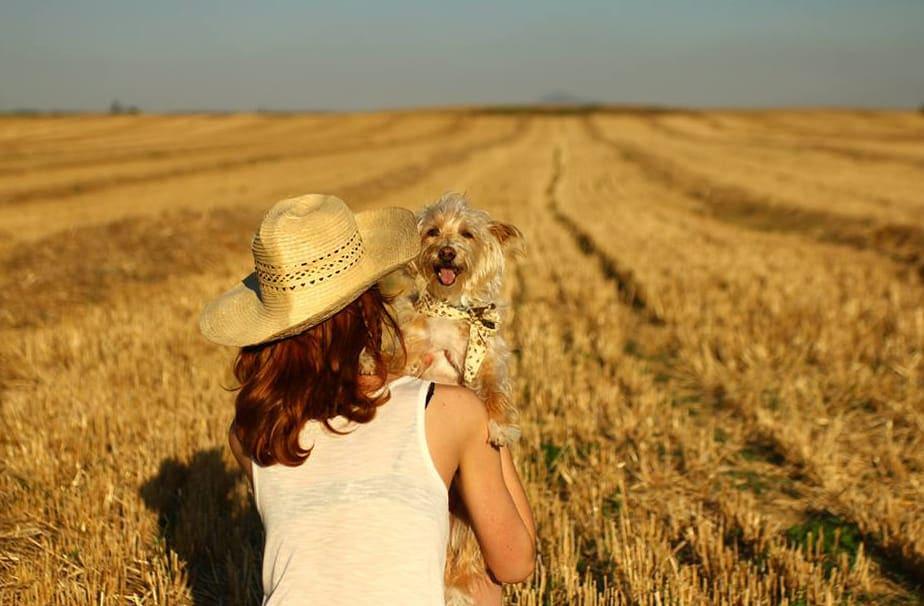 Chica en campo con perro