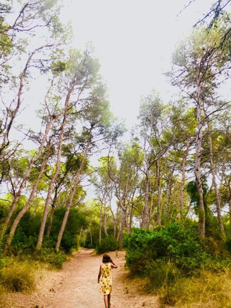 bosque móvil