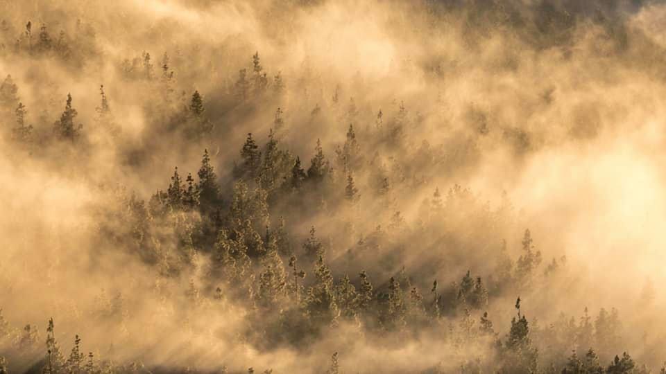 paisaje montañoso luz dorada ganadora #fotoreto7