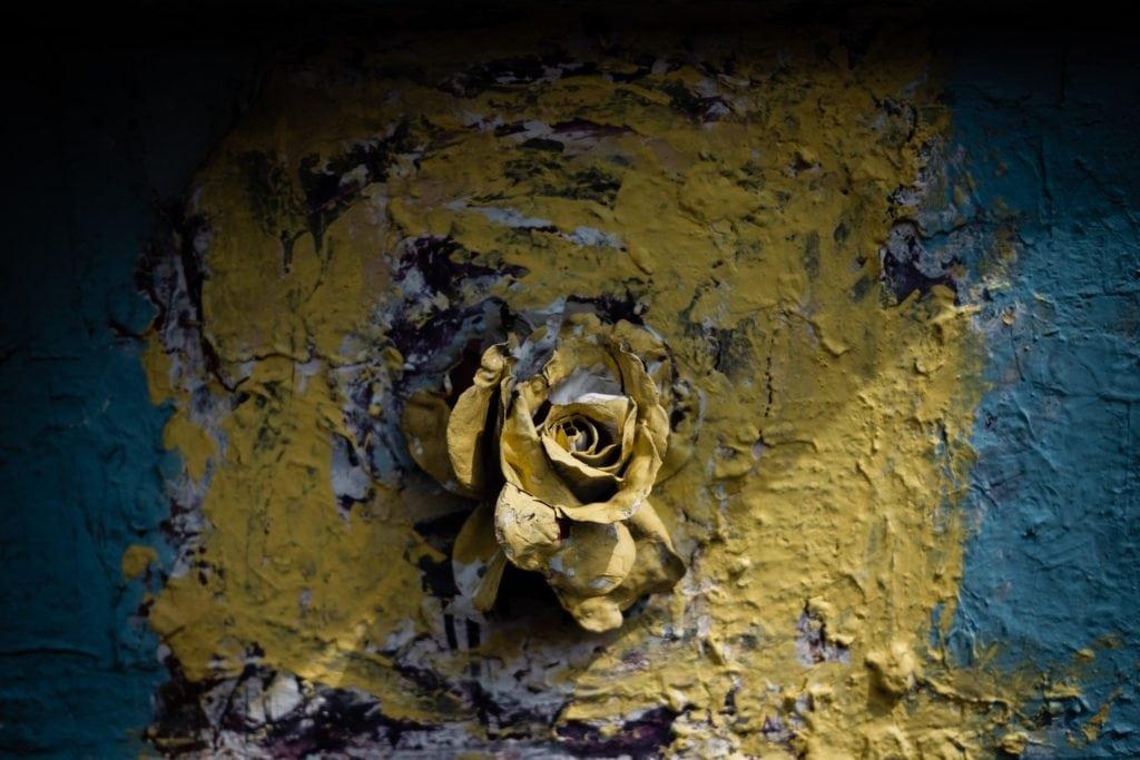 contraste flor óxido
