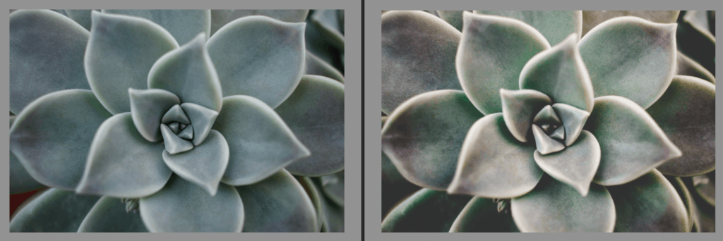 Imagen con y sin preset