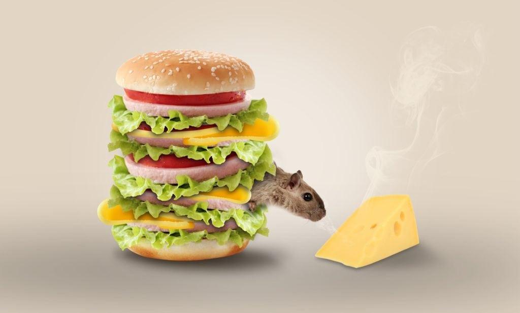 fotografia publicitaria hamburguesa