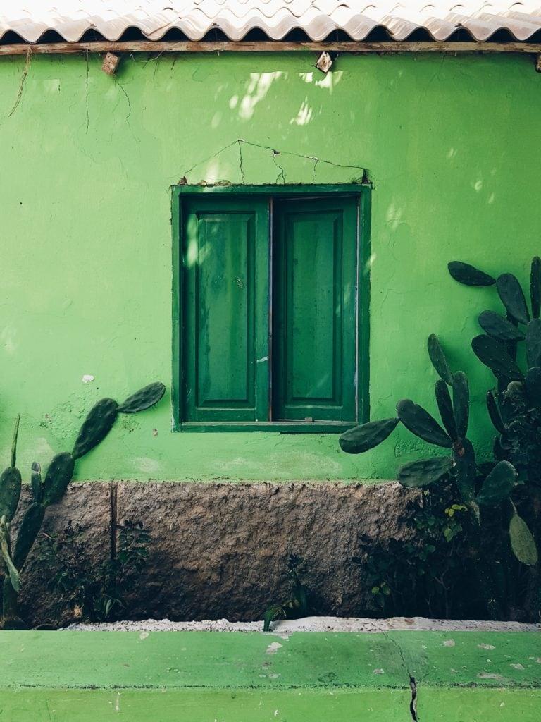 Fachada verde con ventana de color verde y cactus