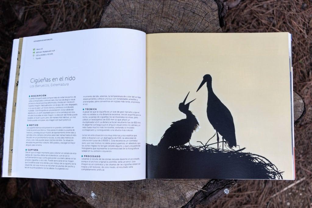Ejemplo de las imágenes del libro de Iñaki relanzón