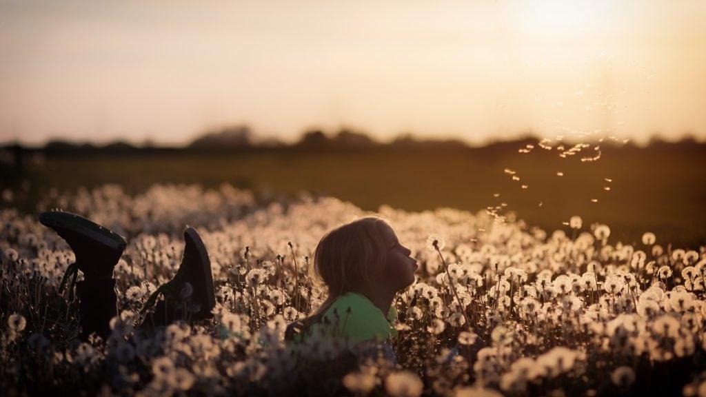 niña_campo_flores