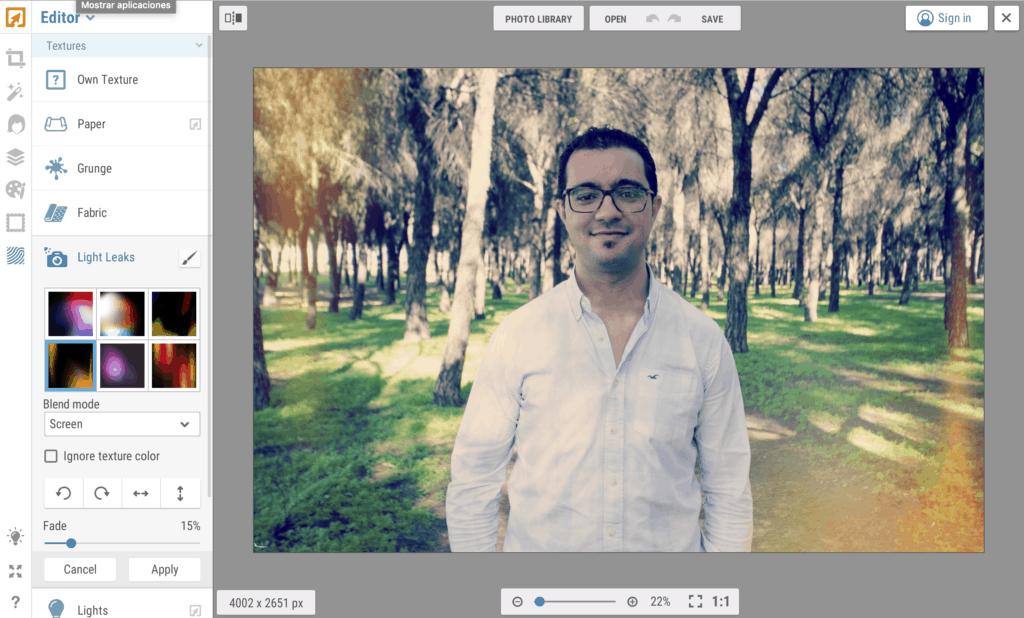Interfaz del editor on line iPiccy
