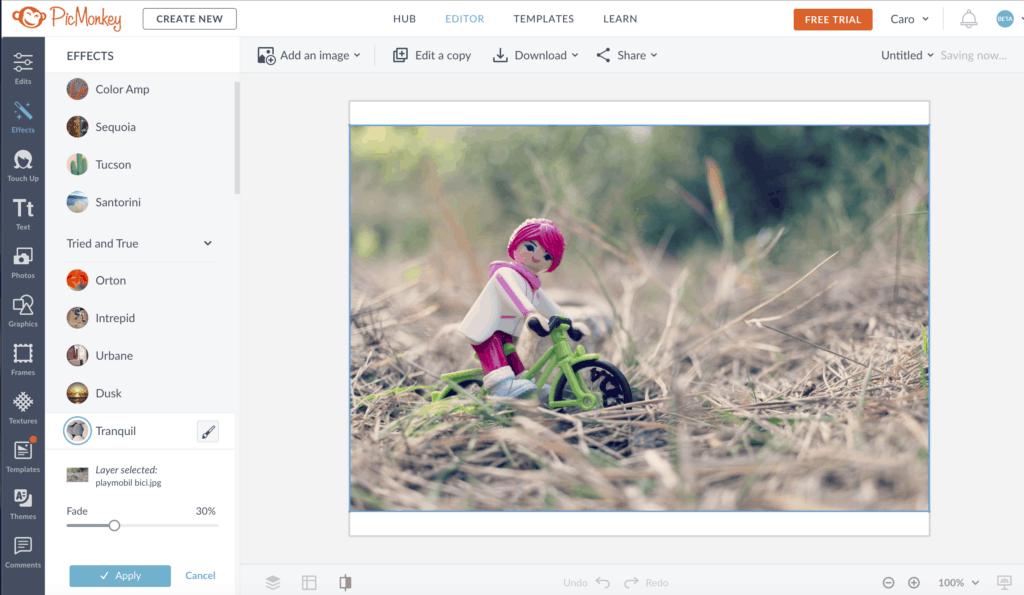 captura de pantalla del editor PicMonkey