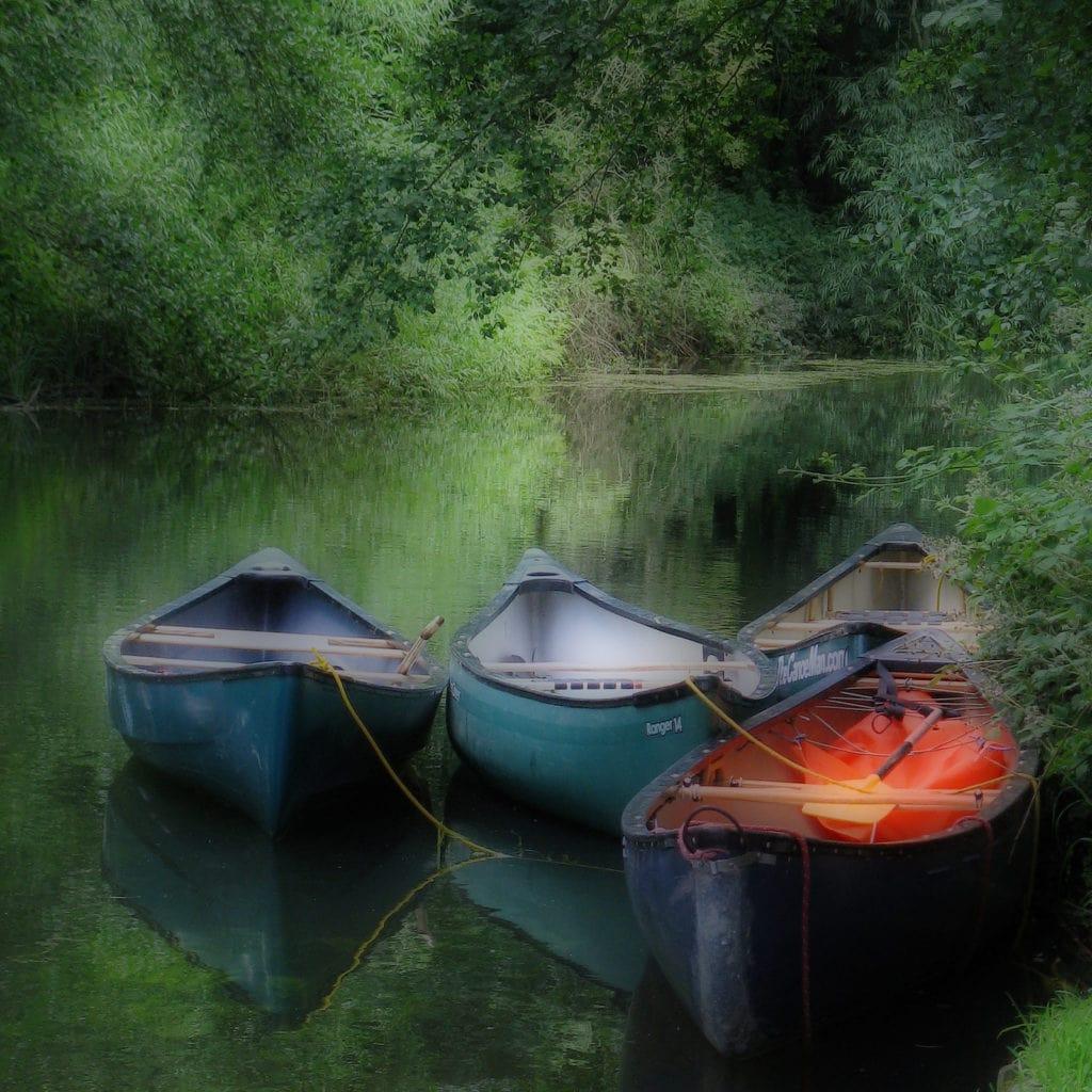 barcas orton