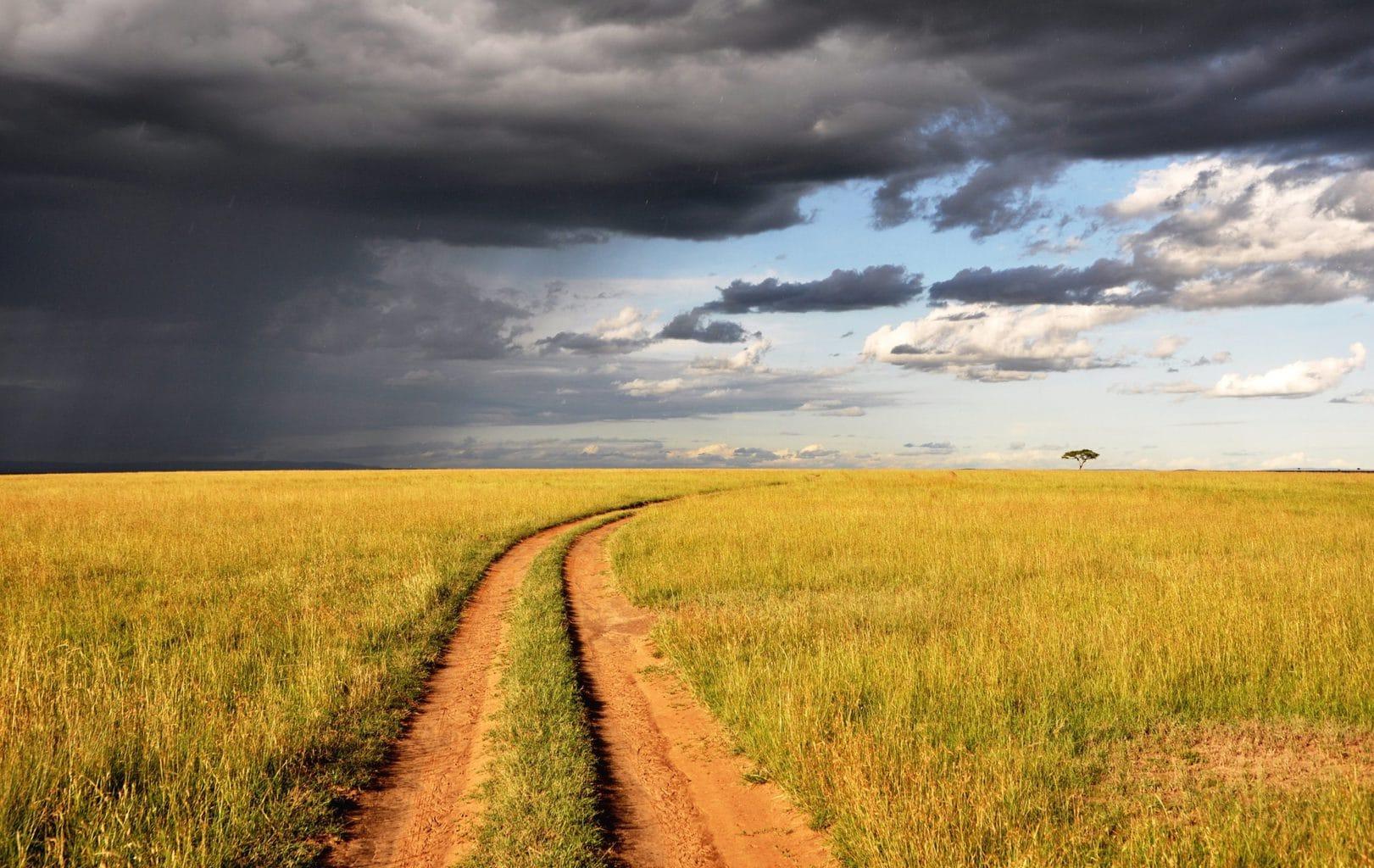 Camino con tormenta al fondo