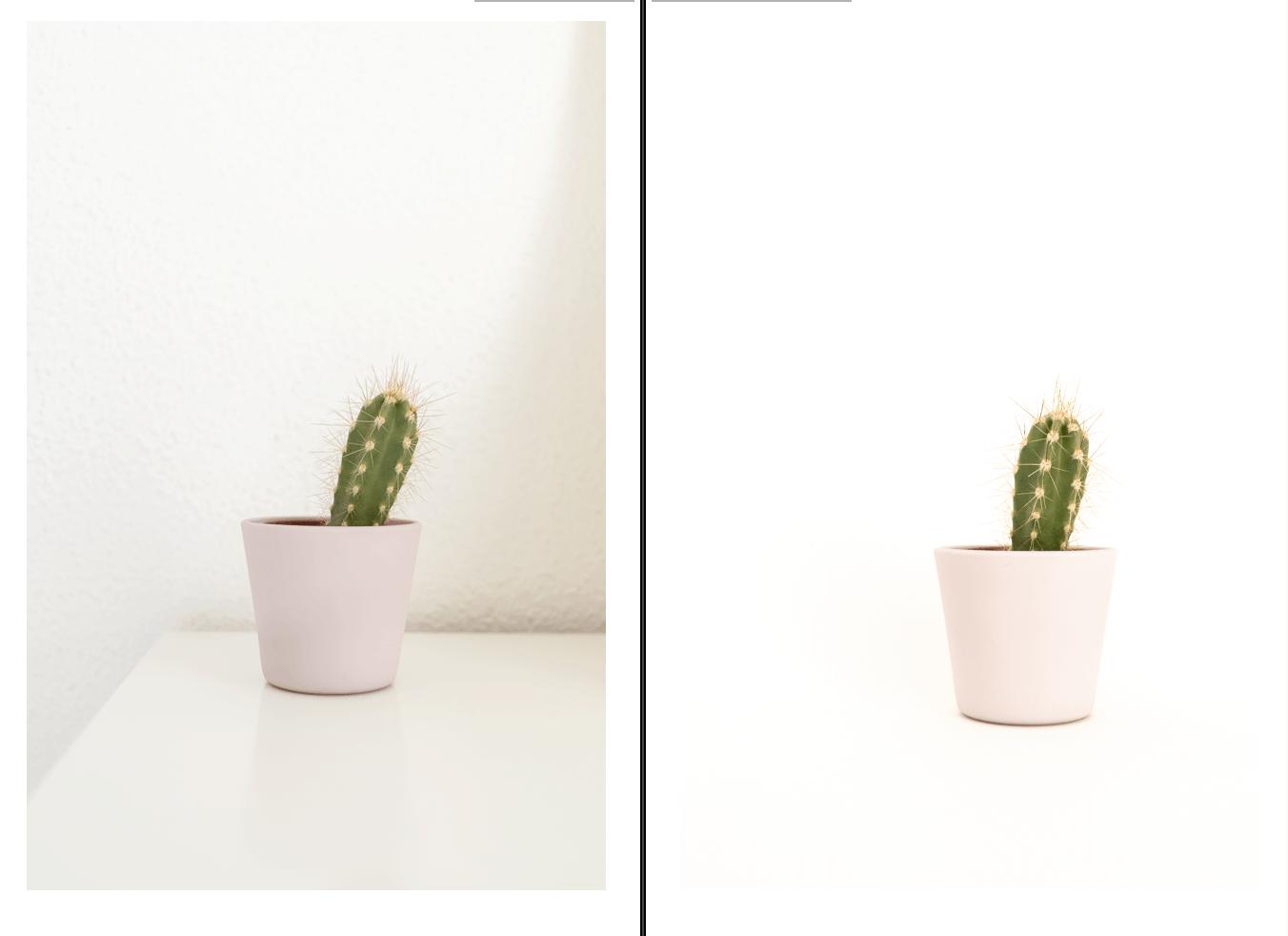 Comparativa de imagen sin y con fondo infinito casero