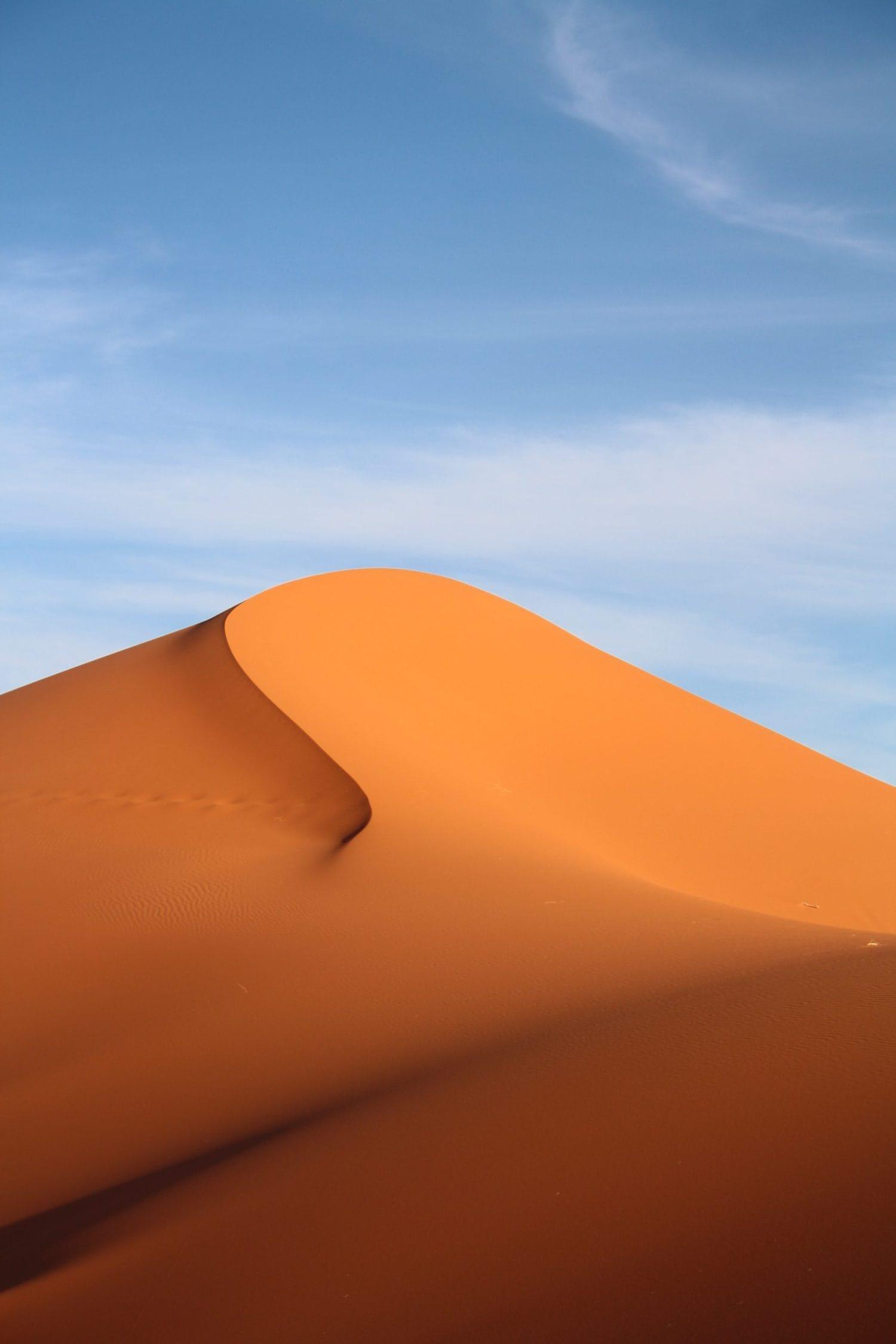Desierto con luz dura