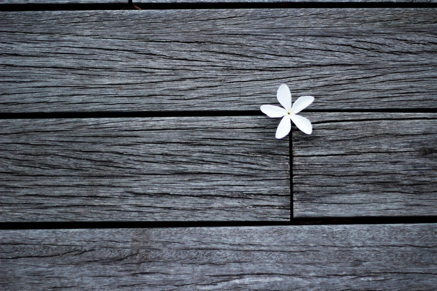 flor regla tercios