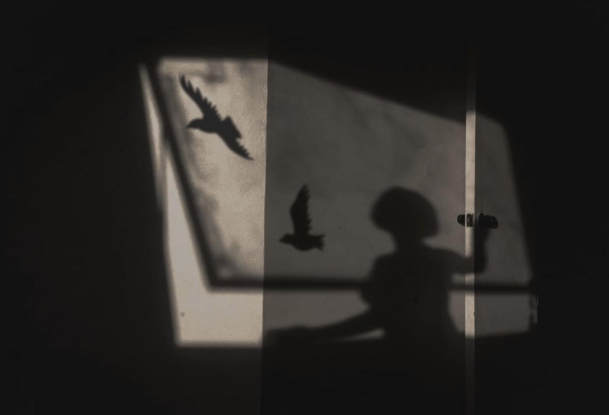Fotografía de sombras ganadora del fotoreto48