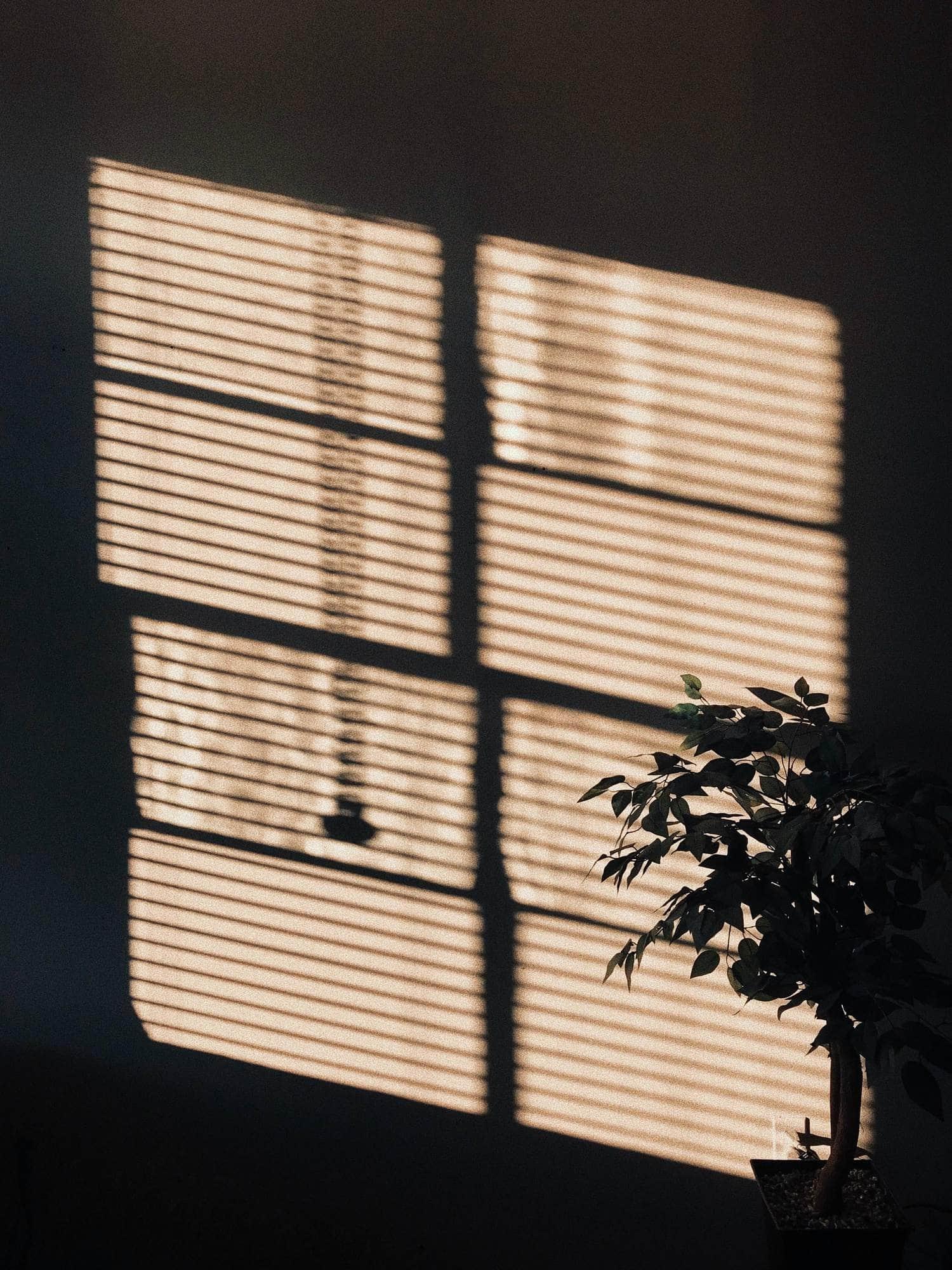 Sombras y luz en la pared