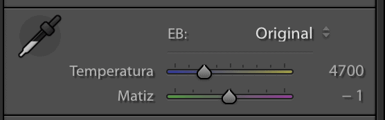 acciones básicas lightroom temperatura de color