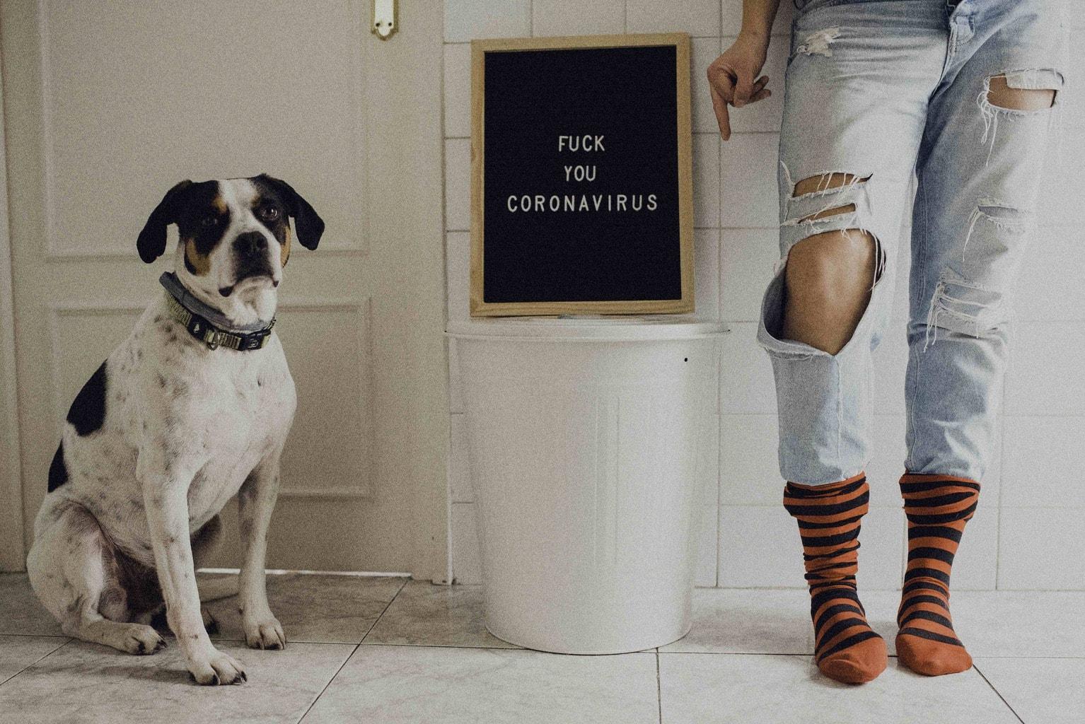 Autorretrato donde se ven solo las piernas y un perro y una pizarra con mensaje