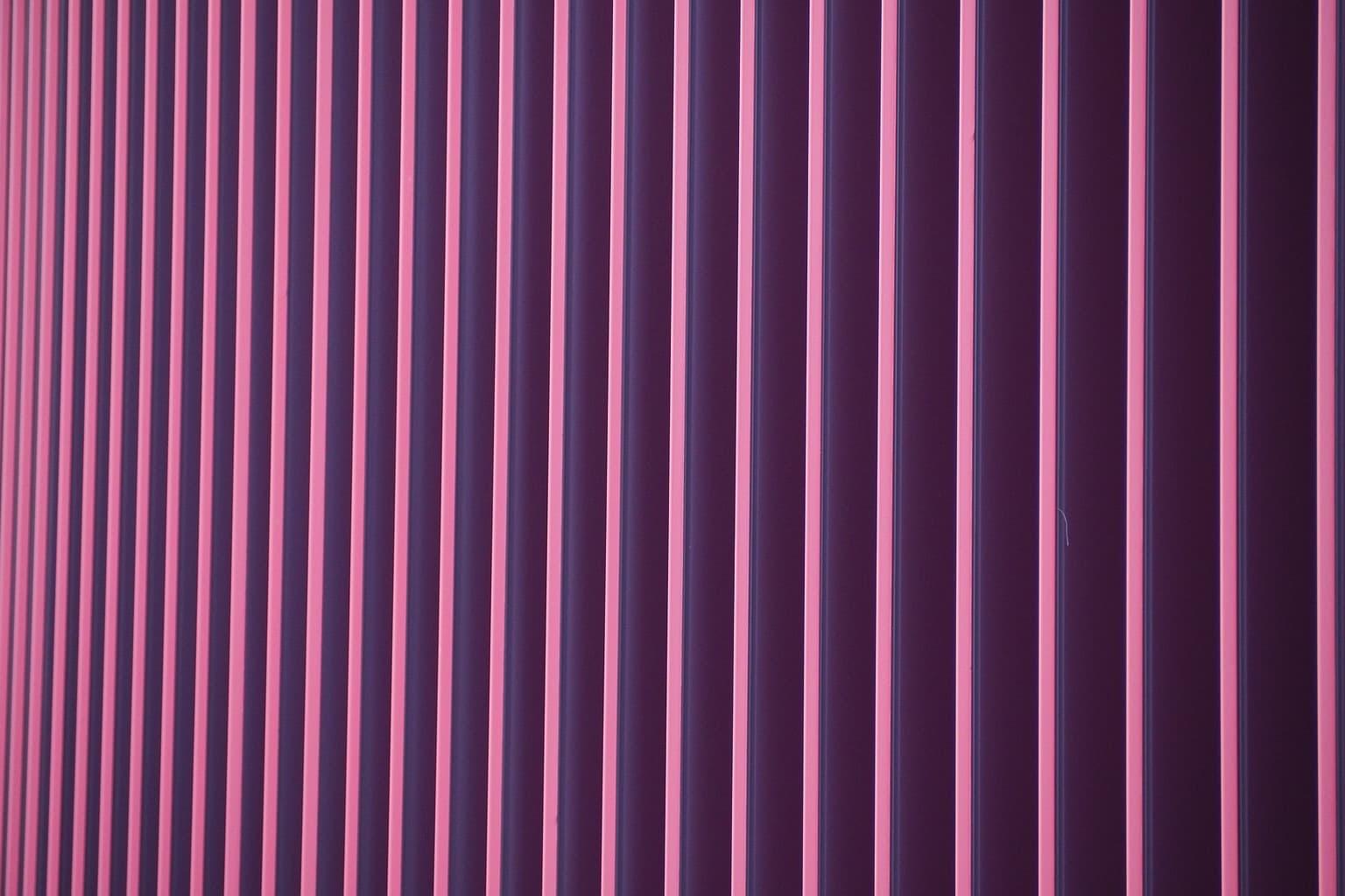 color lila rayas olympus E‑PL10