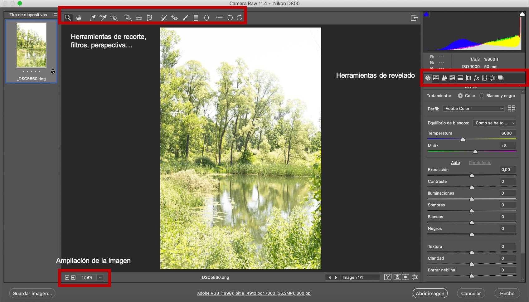 CameraRAW interface