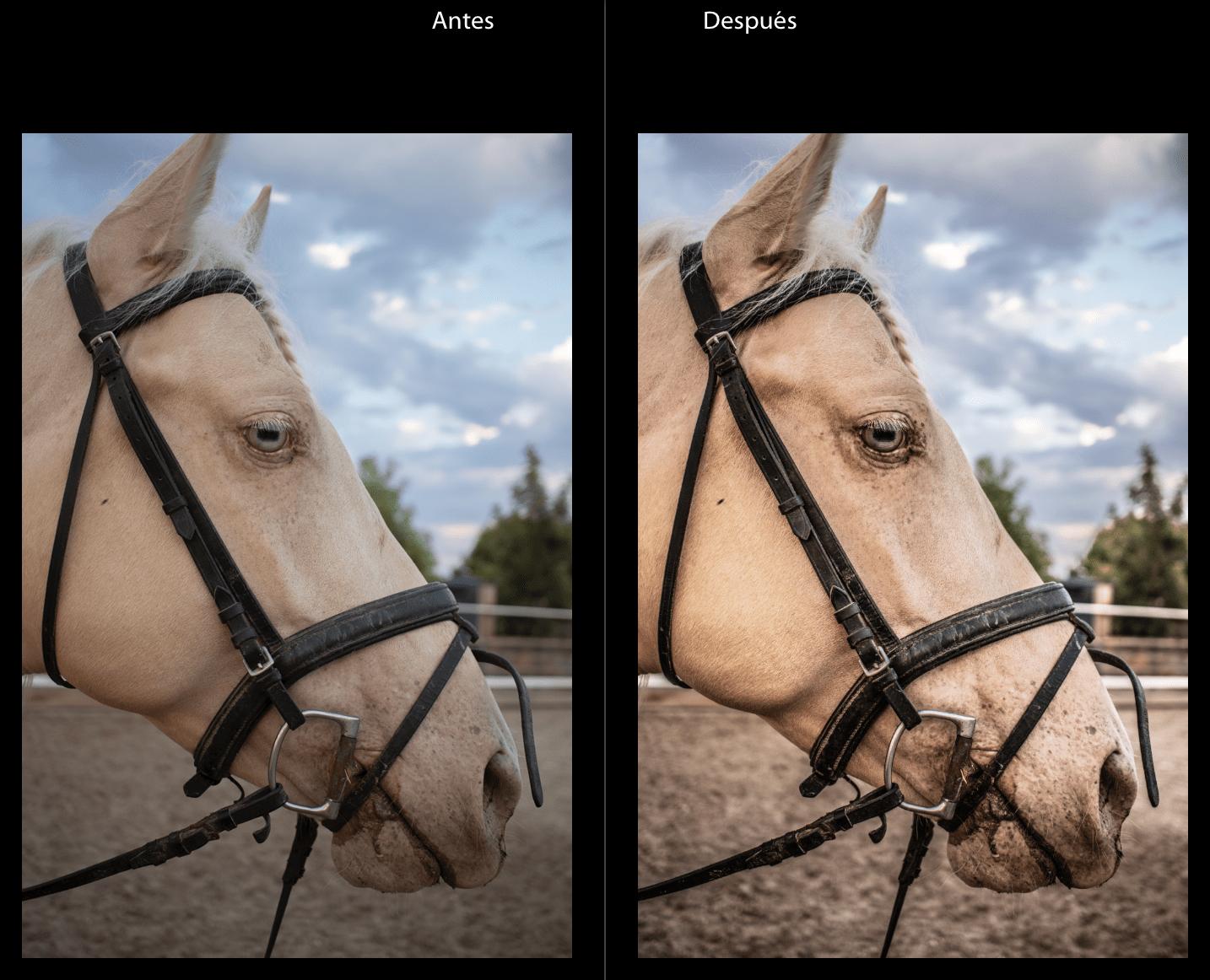 Comparativa de imagen antes y después de aplicar preset en Lightroom