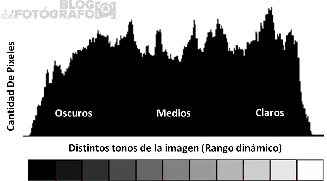 Gráfico de histograma