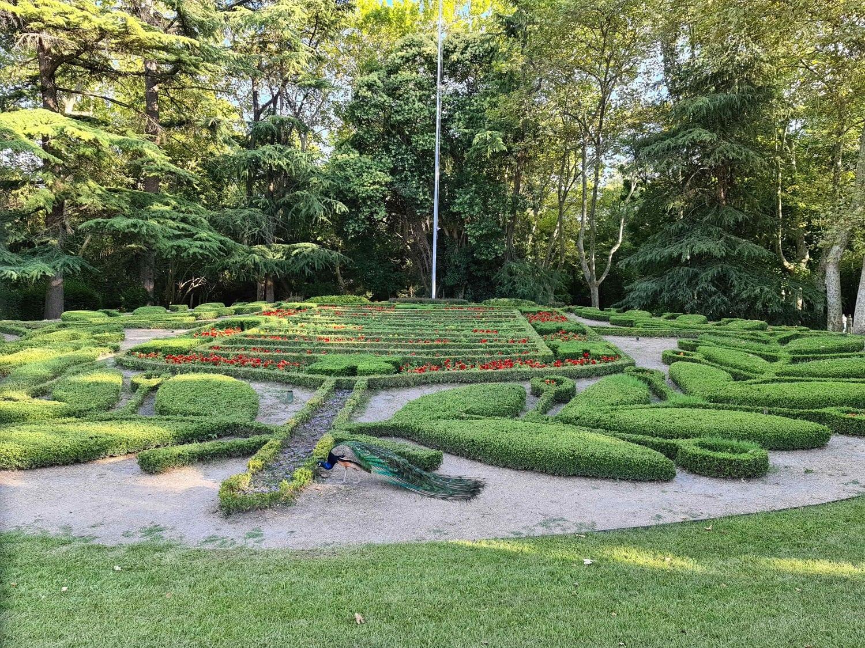 Fotografía de jardín tomada con Samsung Galaxy S20 Ultra