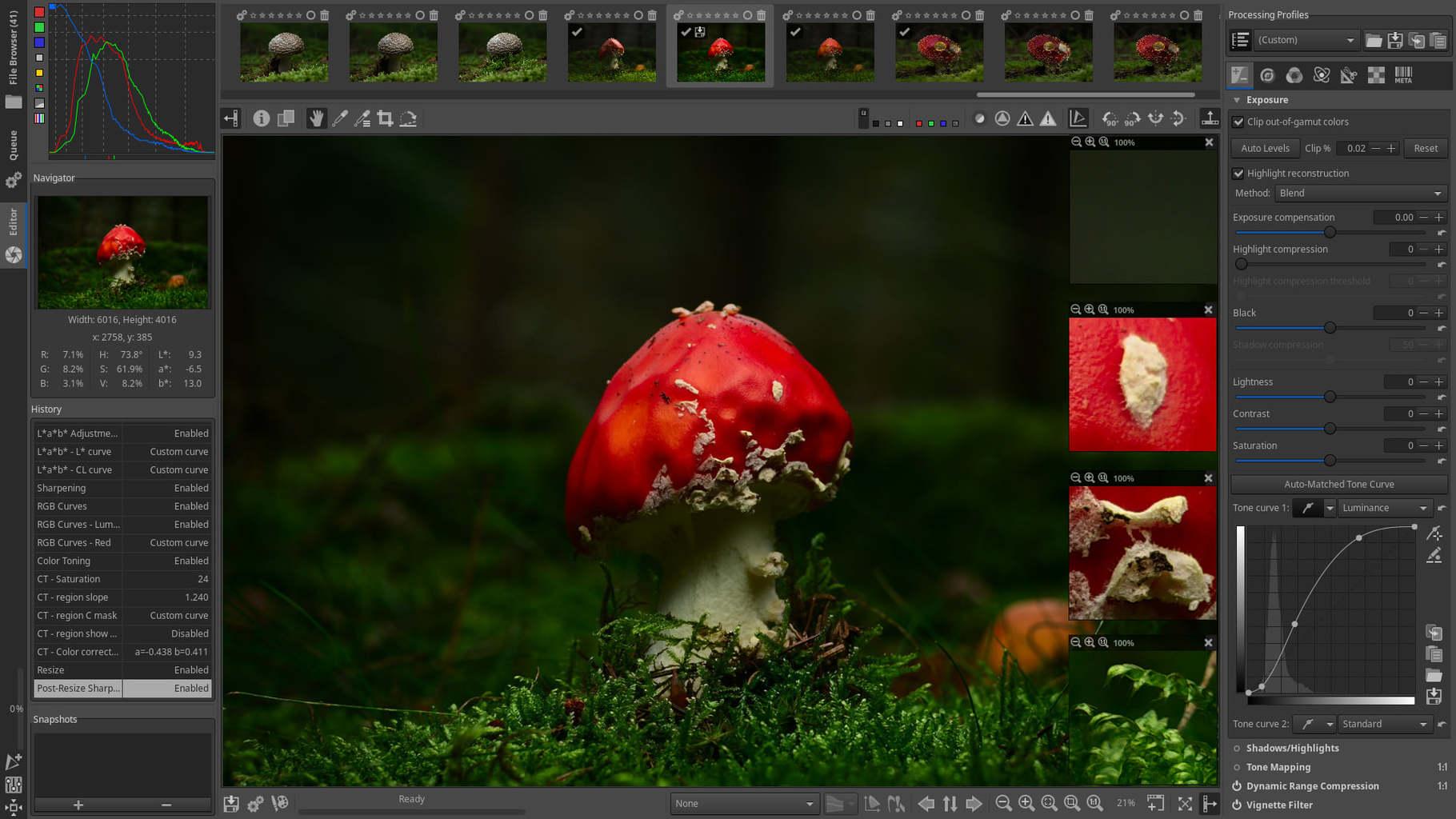 Interfaz del editor de fotos gratuito Rawtherapee