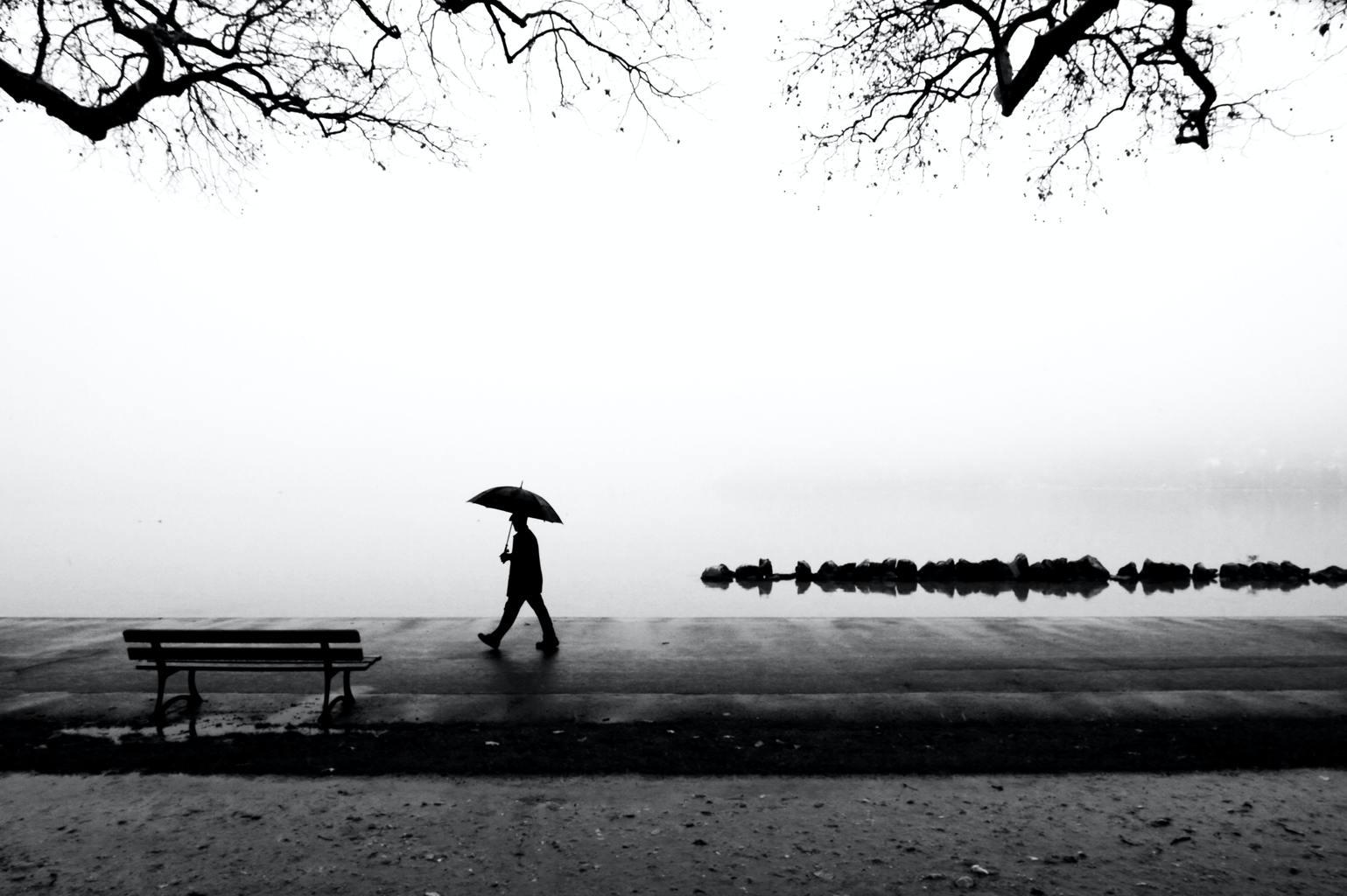 Fotografía en blanco y negro de paraguas