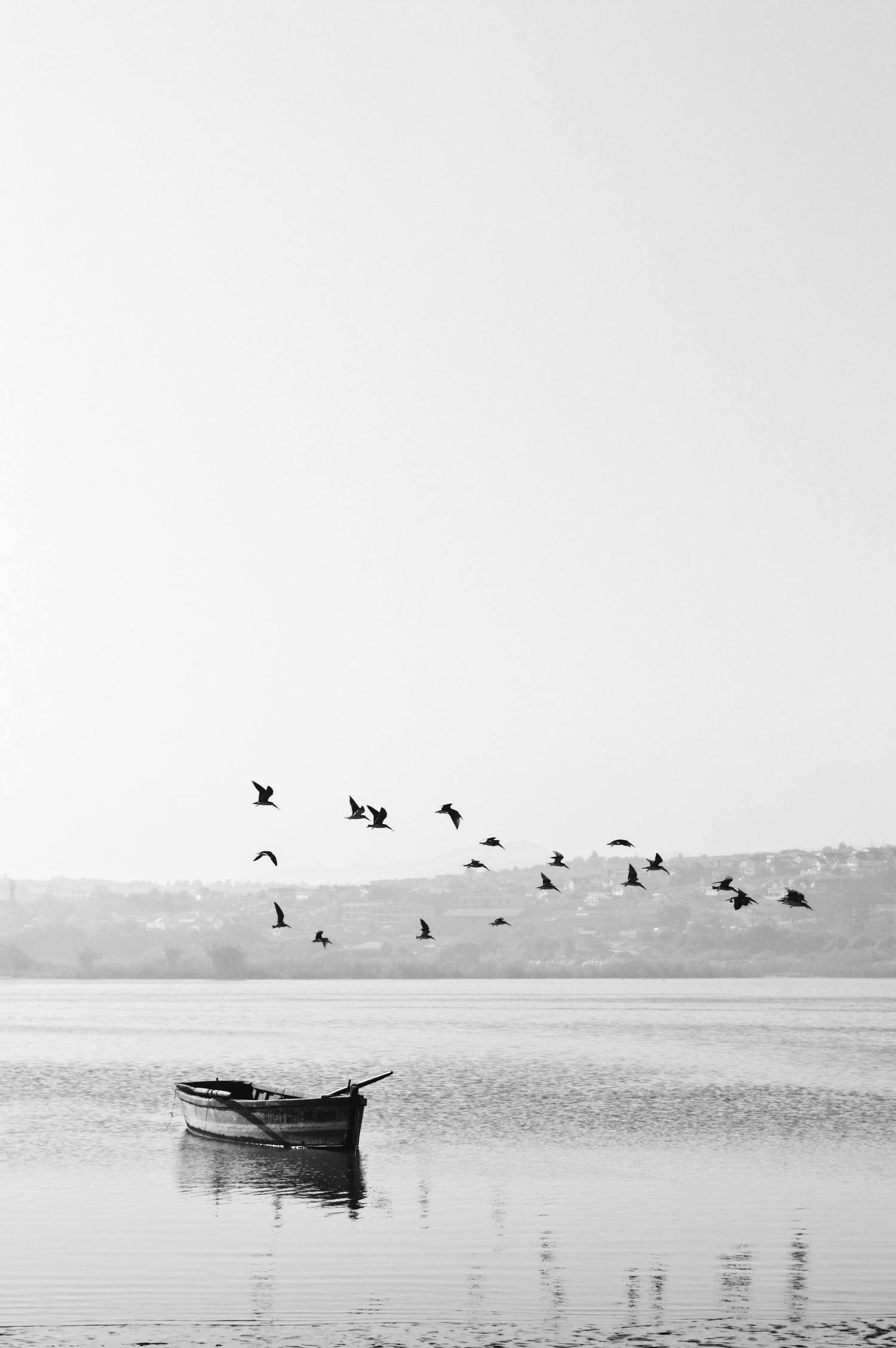 Composición fotográfica en blanco y negro de barca con pájaros volando