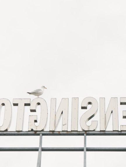 portada para el fotoreto 68 letras