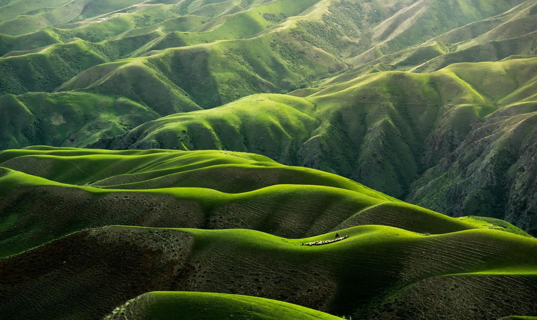 Paisaje a vista de pájaro de montañas verdes