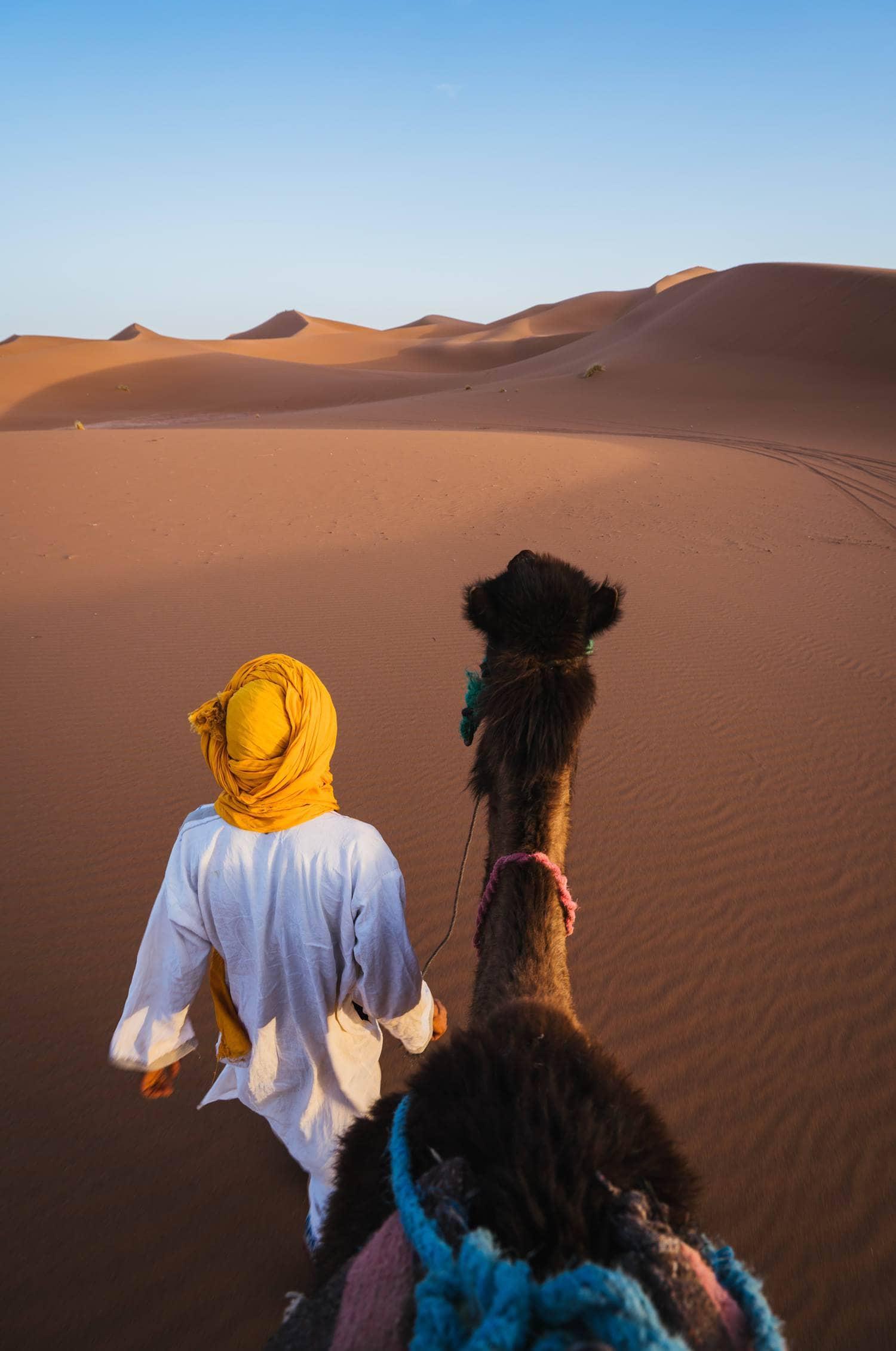 Fotografía tomada desde un camello en el desierto, destino deseado de muchos fotógrafos