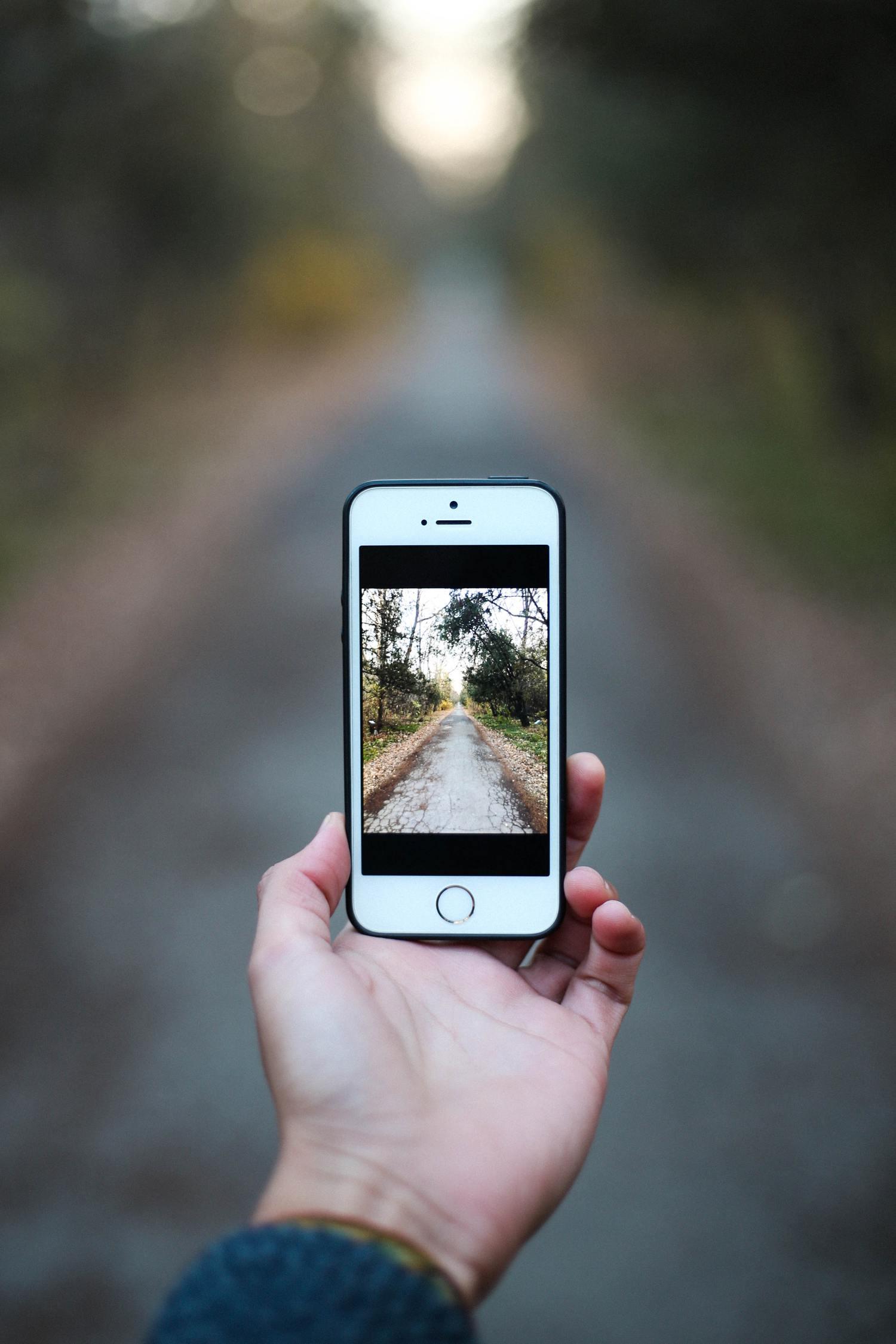 Camino en la fotografía