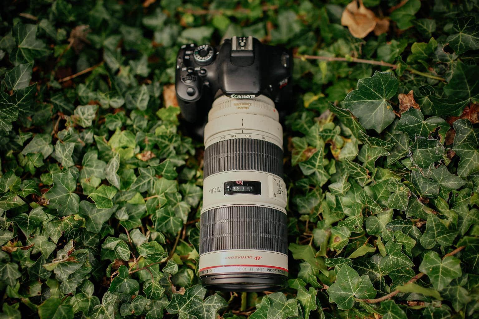 Objetivo de Canon de color blanco de la serie L
