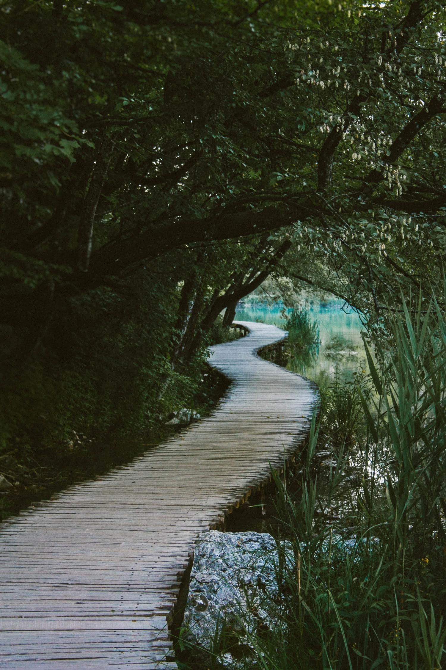 Camino sugerente