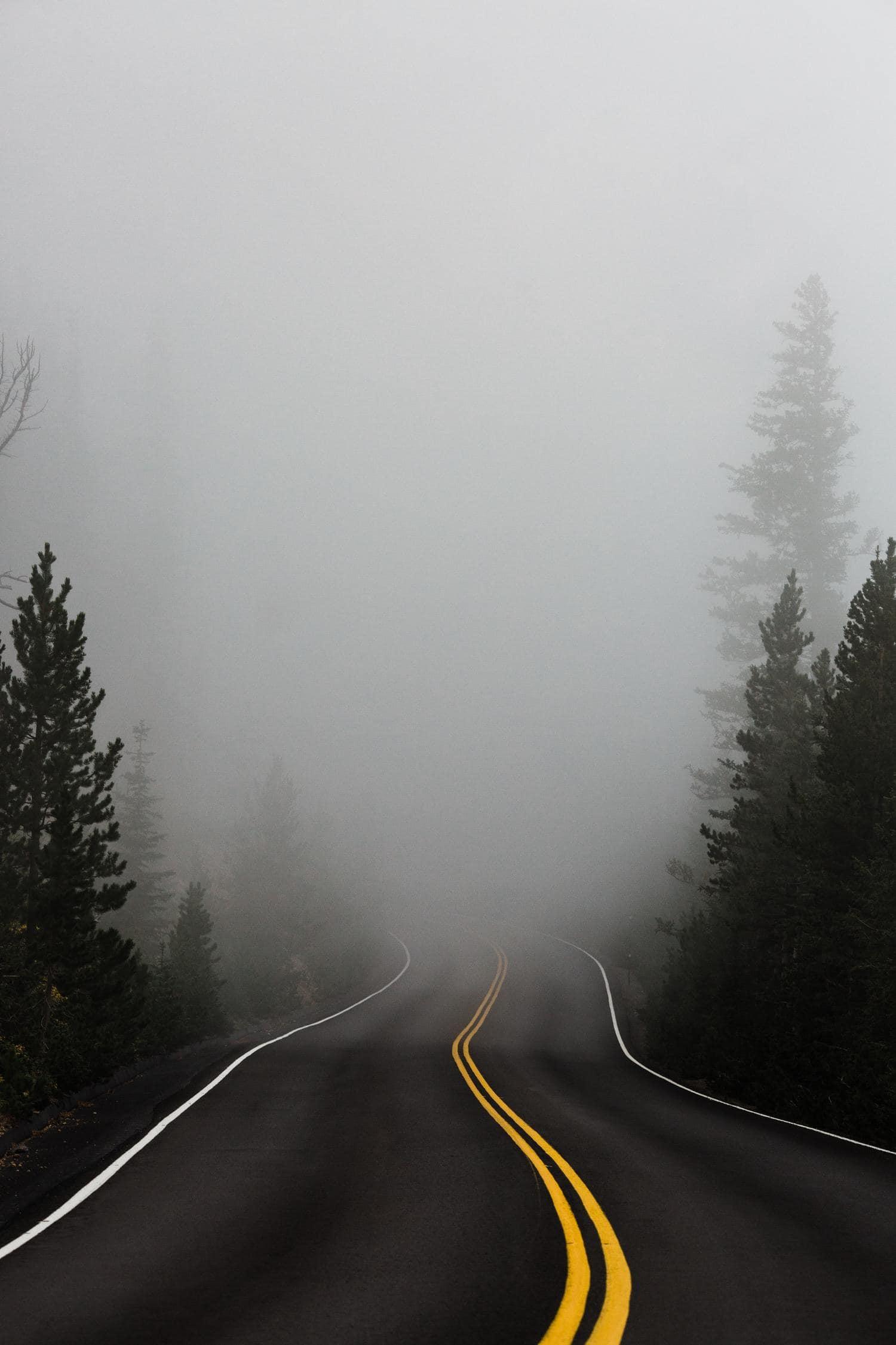Camino con niebla