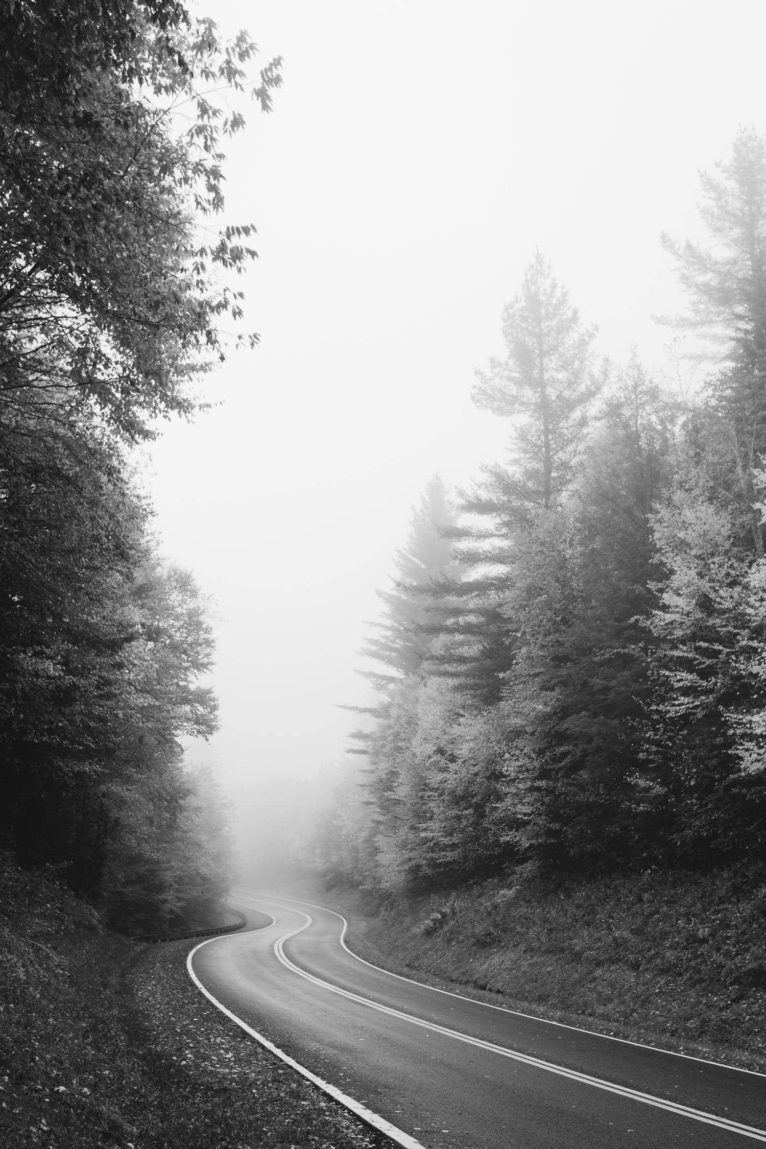 Paisaje de carretera en blanco y negro