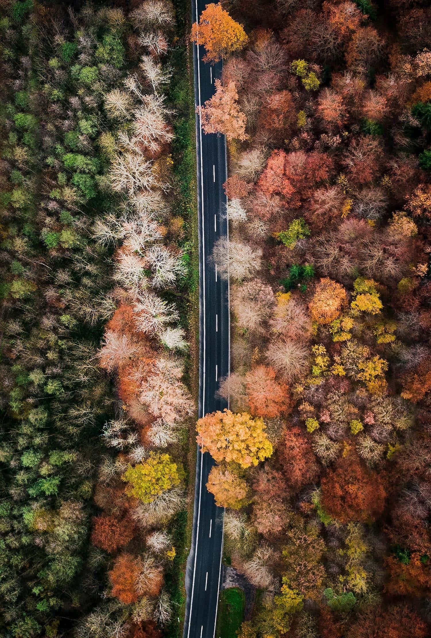 Carretera desde el cielo