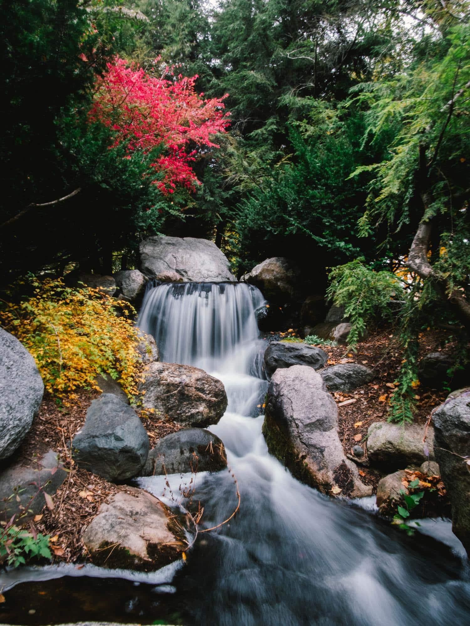 técnica fotográfica agua sedosa río