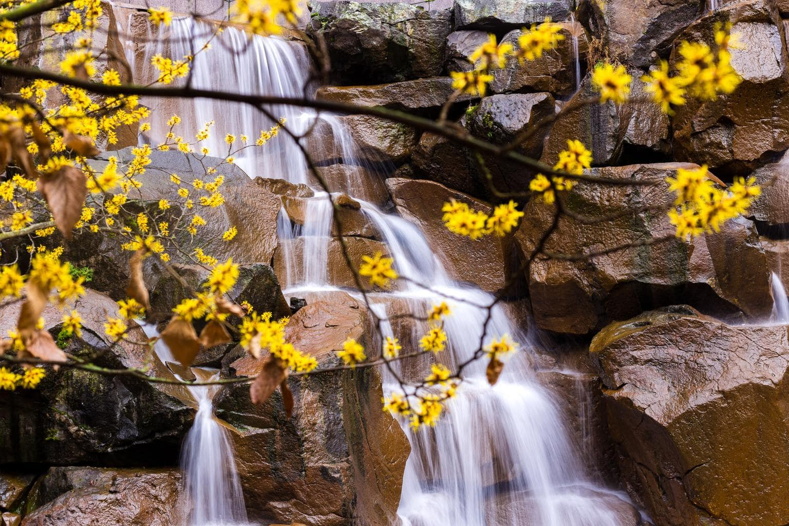 cascada río primavera