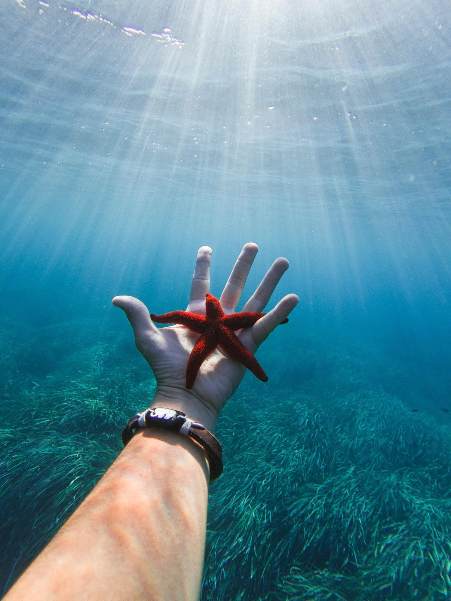 Estrella de mar en la mano bajo el agua
