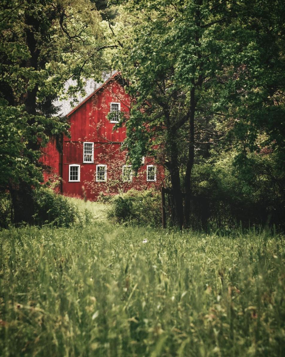 Fachada roja entre vegetación verde, ganadora de fotoreto99