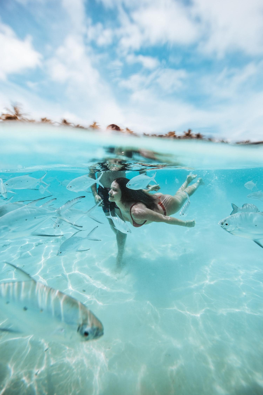 Pareja rodeada peces bajo el agua