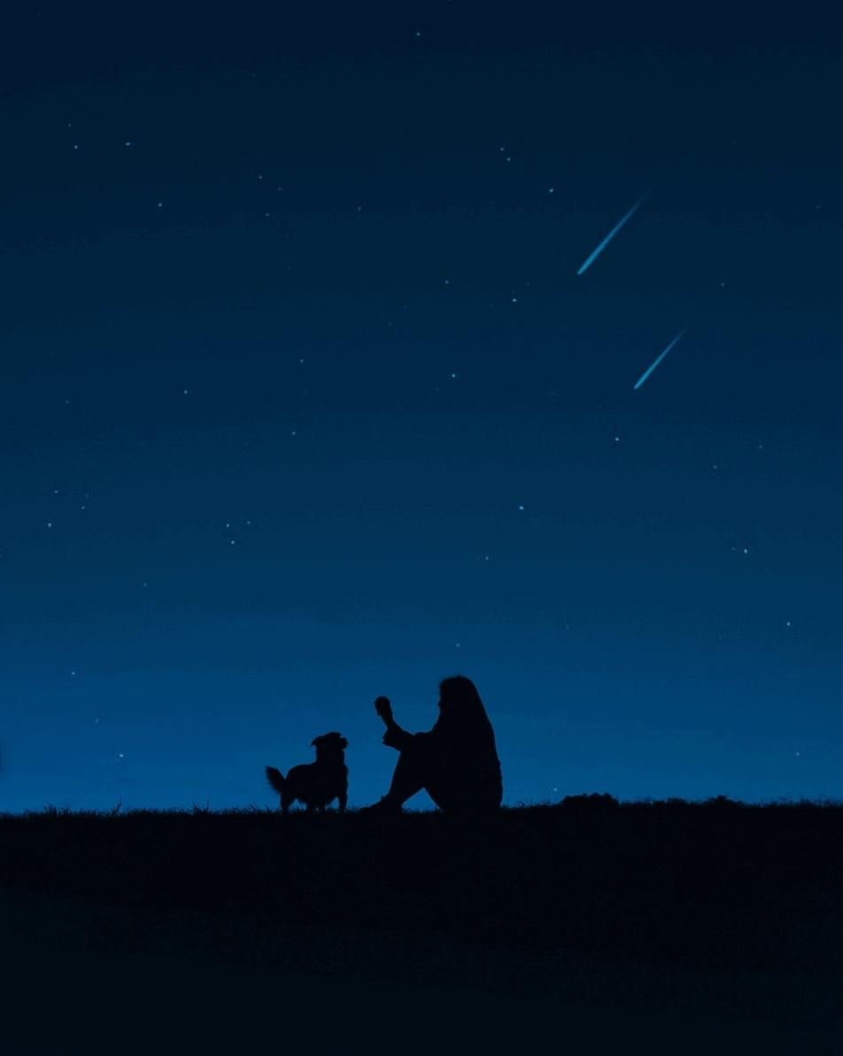 Fotografía de silueta nocturna sobre cielo azul ganadora del Fotoreto103