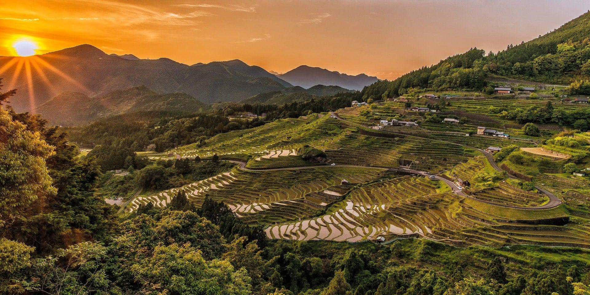 Fotografía de montañas de arrozales al amanecer